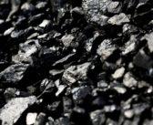 Монастироцький психоневрологічний інтернат незаконно переплатив за дрова і вугілля 50 тисяч гривень