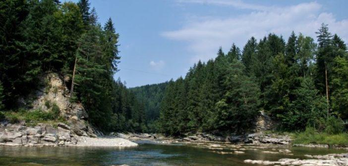 Берег річки Прут за 13,2 мільйони укріплюватиме фігурант кримінального провадження